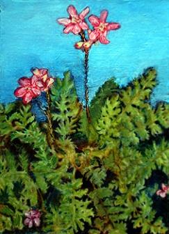 fernflowerssm1
